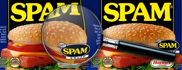 A Spam SEO Email Dissected